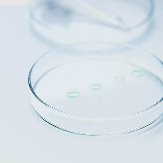 DMS against bacteria